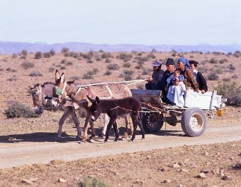 "The farm labourers in the Karoo are also known as ""karretjie mense"" (people of the donkey cart)"