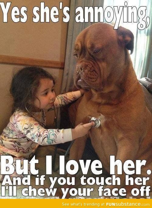 As seen on facebook... mastiffs...