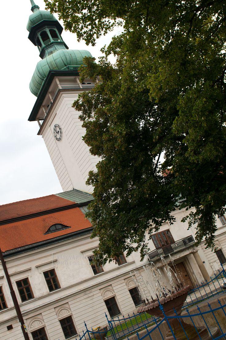 Castle and fountain (Vsetín)