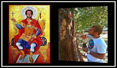 Περιβόλι της Παναγιάς: Αίμα του Αγίου Νικολάου βγαίνει μέσα απο δένδρο του μαρτυρίου του!