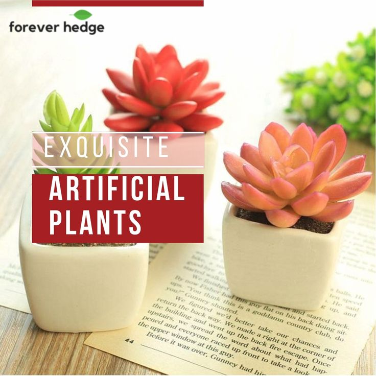 #Decorating the ambiance and look of our #home is very exciting. Initial you may feel so troubled but we give you a golden tip to decorate your #indoor. . Do you like #greenery? of course everyone loves lush and beautiful little green plants hanging or lying on the dinner table. So, here is the collection of pretty replica plants to beautify your home decor. . #ThursdayThoughts #shopping #trees #flowers #gardens #inspiration #artificialtree #interiordesign
