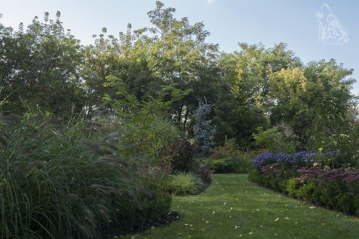 Western part of our garden.