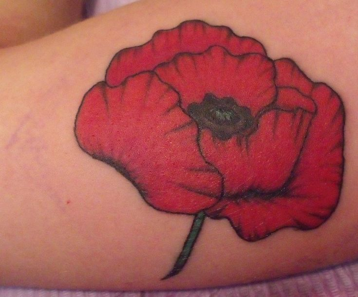 red poppy tattoos - Google Search