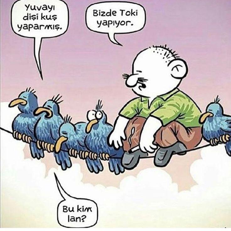 �������� #karikatür #mizah #caps #vscophile #komik #vscoturkey #istanbul #ankara #izmir #karadeniz #komedi #penguen #leman #gırgır #antalya #mersin #adana #uykusuz #turkiye #denizli #iyigeceler #diyarbakır #vscoturkey #eskisehir #beşiktaş #kahramanmaraş #hunili #pazartesi #günaydın #goodmorning http://turkrazzi.com/ipost/1514685168786308929/?code=BUFPiLID39B