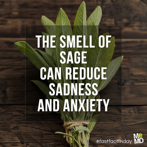 #FastFactFriday: The smell of sage can help reduce sadness and anxiety. A 2010 research study documented sage (specifically, S. sclarea) essential oil's antidepressant effects, suggesting that it could be a useful herb for depression and anxiety.   Additionally, research shows that sage helps decrease inflammation in the body, helps with digestive distress, improves memory, and even helps regulate blood sugar levels!
