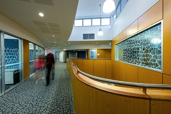 DecorZen and DecorStyle ceiling by Decor Systems at award winning St Paul's High School