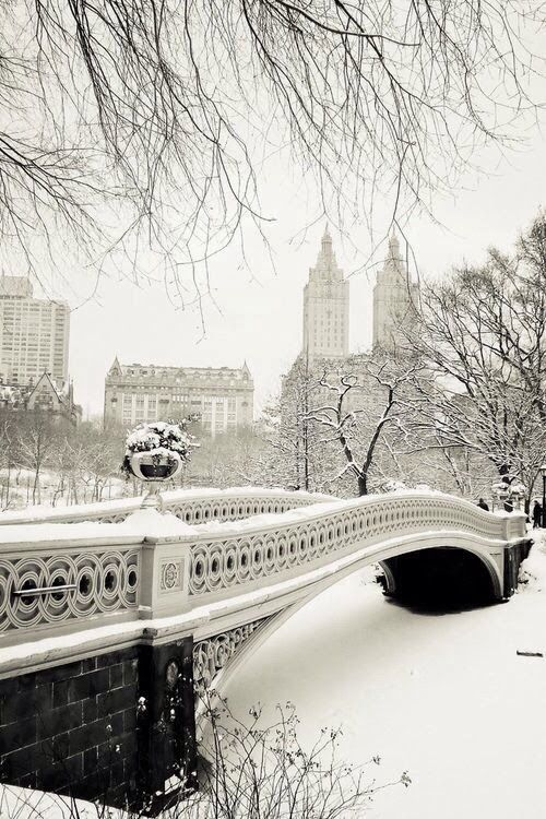 Beautiful snow in Central Park. NY, NY. I have such fond memories of standing on this bridge. #photography