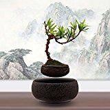 Japanese style Levitating Air Bonsai Pot  Magnetic Levitation Suspension flower (Gray)