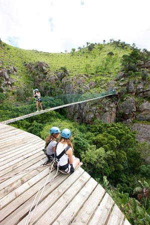 Experience one of SA's fastest growing eco-adventures. A Canopy Tour takes you on an unforgettable adventure as you slide from one platform to the next along a series of steel cables set amongst magnificent natural surroundings.  The scenery high up within the forest canopy is spectacular. Take in waterfalls and spotting birdlife amongst the surrounding trees.    Canopy Tours are currently located at Magaliesberg, Tsitsikamma, Karkloof, Magoebaskloof, Drakensberg and Malolotja (Swaziland).