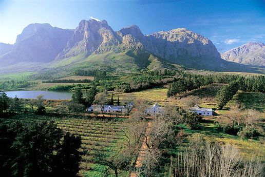 Boschendal Estate, between Franschhoek and Stellenbosch in South Africa's Western Cape.