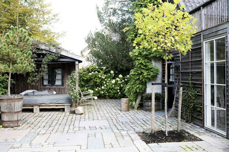 Open courtyard // Plants // Dark exterior // Scandinavian beach house.. – Greige Design