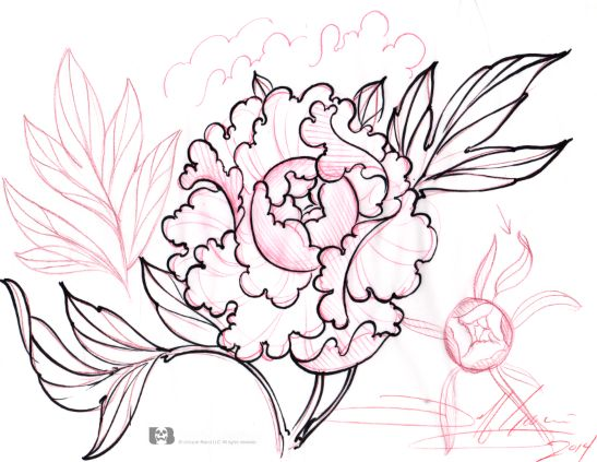 Amazing Jeff Gogue teaches how to draw a peony