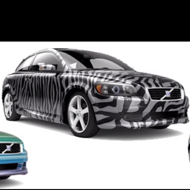 Zebra Paint Job On A Volvo