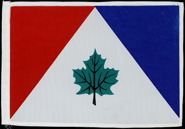 green red and blue flag