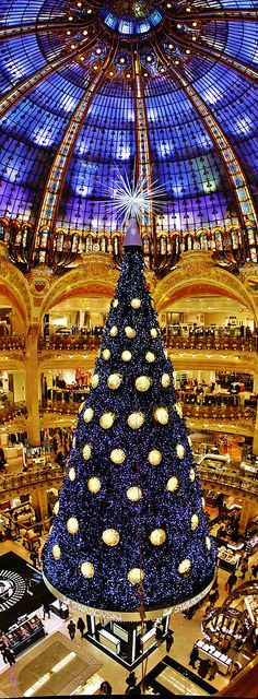 Lafayette Christmas Tree - Paris via @butterbean2001. #Paris #Christmas