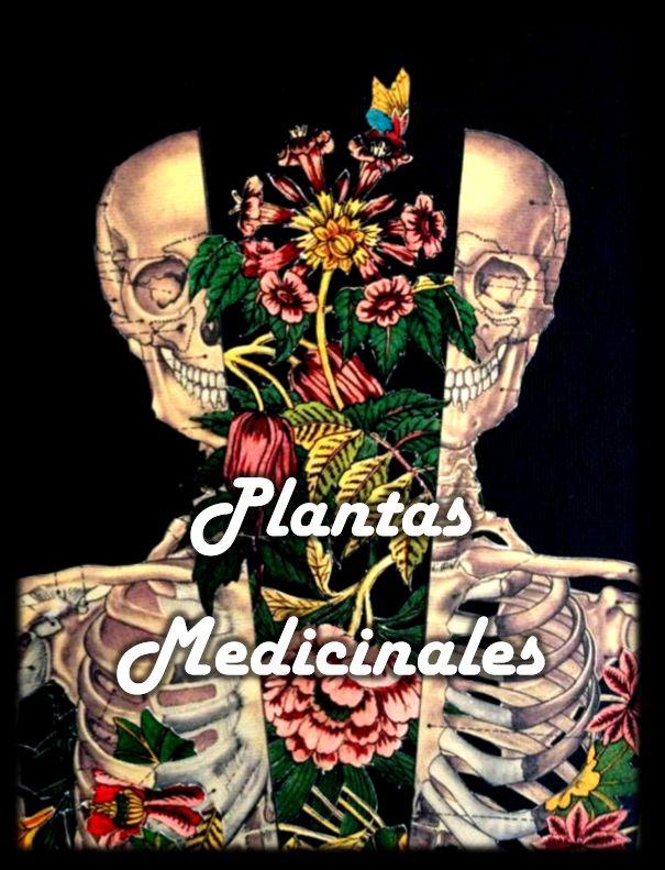 esta es la portada de mi proyecto de grado. Plantas medicinales en la salud – Diseños