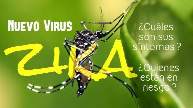 virus zika sintomas