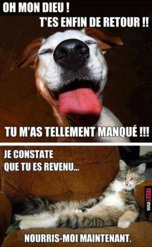 Gif Panneau Humour (638)
