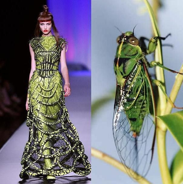 fall couture | JEAN PAUL GAULTIER FALL COUTURE 2008, STYLE.COM & http://www ...