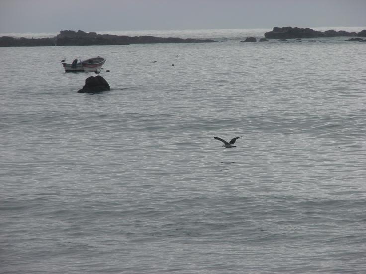 Punta Lavapie I ...!!!
