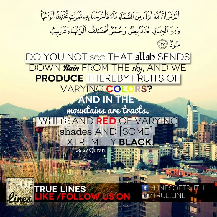 Do you not see that allah sends down rain from the sky, and we produce thereby fruits of varying colors? And in the mountains are tracts, white and red of varying shades and some extremely black. 35:27 #quran