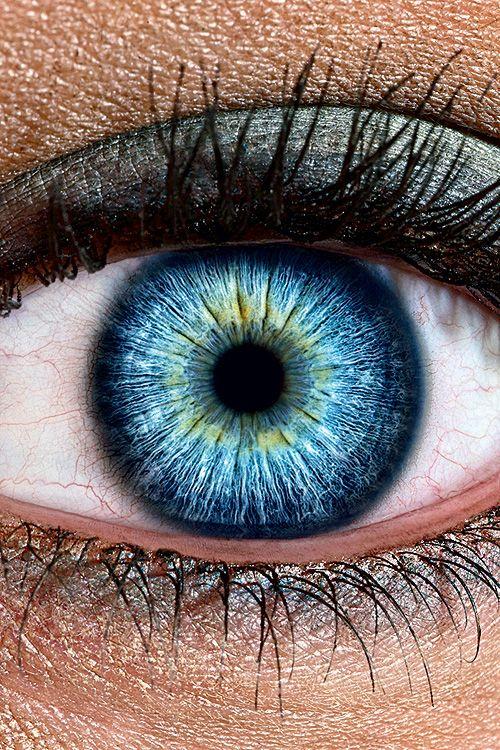 Сколько мегапикселей в глазу? | Вопрос-ответ | Вокруг Света