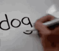 How you draw dog from dog...what.