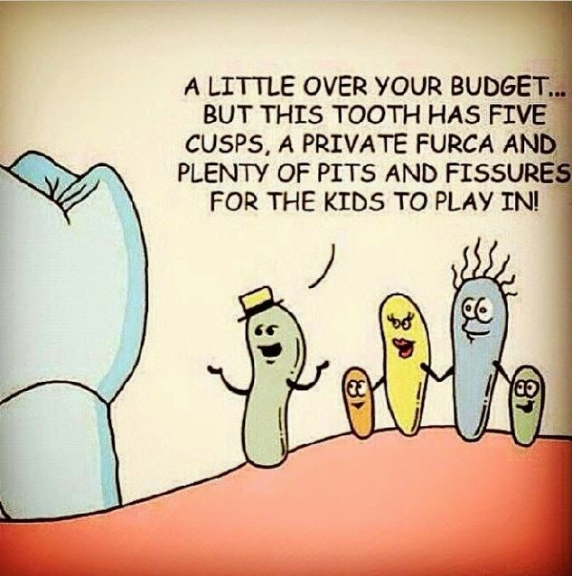A little over your budget... #jokes #funny #image #humor #chistes