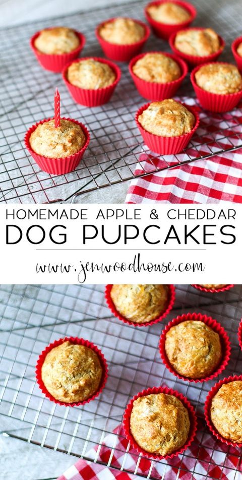 Homemade Apple and Cheddar Dog Cupcakes (Pupcakes!) www.JenWoodhouse.com