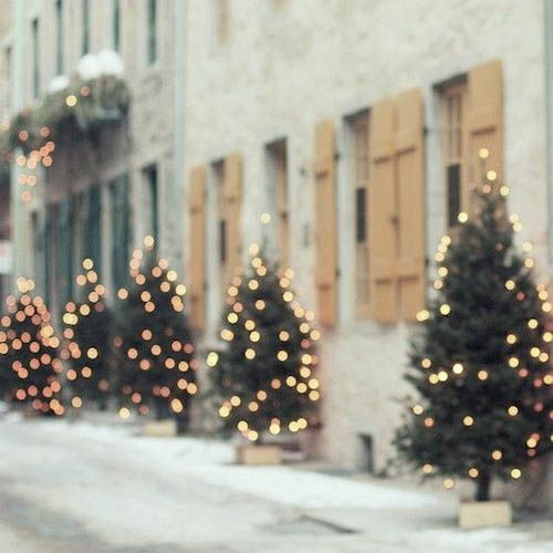 every street in winter should have a christmas tree outside the door!!