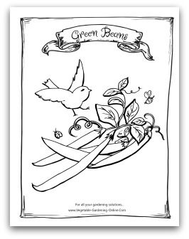 Free Vegetable Garden Coloring