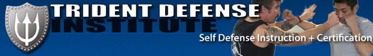 Trident Defense Institute | Interactive online training programs for self defense | fitness and firearms training for home defense. MMA | JKD | Thai boxing | grappling and knife fighting training.