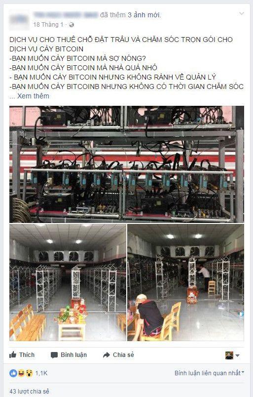 'Herd affitto' de coltello Bitcoin a 1,7 milioni / anno a Saigon Immagine 1