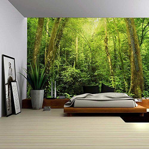 Wall26® - Entrance to a Dark Leafy Forest - Wall Mural, R... https://www.amazon.com/dp/B01BY43VGK/ref=cm_sw_r_pi_dp_x_jZh7xbEKTK55Q