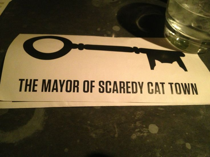 The Mayor Of Scaredy Cat Town