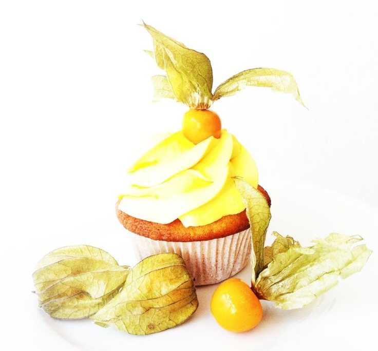 Orange Dream Cupcake Sun Special!