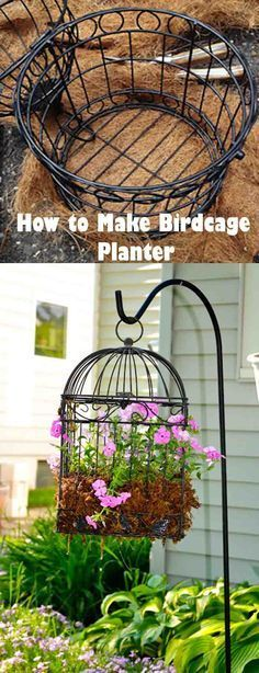 Utilize vertical space like never before, create a birdcage garden. Learn how to make birdcage planter and how to plant succulents and flowers in it.