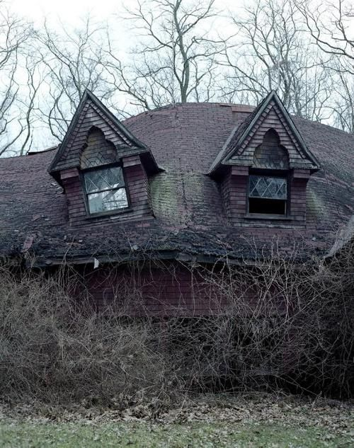 still beautiful dormers.Wild Animal, Haunted Houses, Dreams House, Old Houses, Ruins, Abandoned Beautiful, Forgotten, Abandoned Houses, Abandoned Places