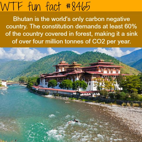 The only carbon negative country - WTF fun facts