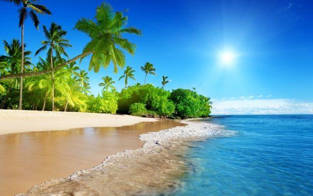 tropické, blaho, slůnce, pláž, pobřeží, sky, oceán, palm, letní, příroda, v…