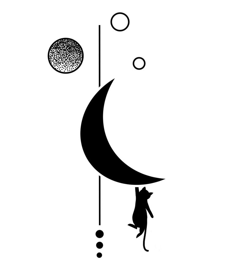 Aguanta allí #kitty #cats #kittens #moon #moonchild #circles