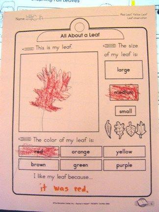 1000+ images about Preschool teacher on Pinterest | Early ...