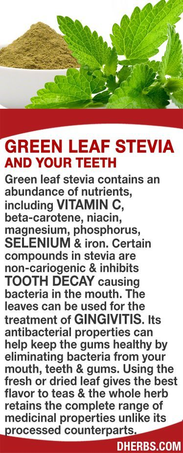Green leaf stevia contains an abundance of nutrients, including vitamin C, beta-carotene, niacin, magnesium, phosphorus, selenium iron. Compounds in the plant inhibits tooth decay causing bacteria in the mouth. The leaves can be used for the treatment of gingivitis. Its antibacterial properties can help keep the gums healthy by eliminating bacteria. The fresh or dried leaf retains the complete range of medicinal properties unlike its processed counterparts. #dherbs #healthtips…