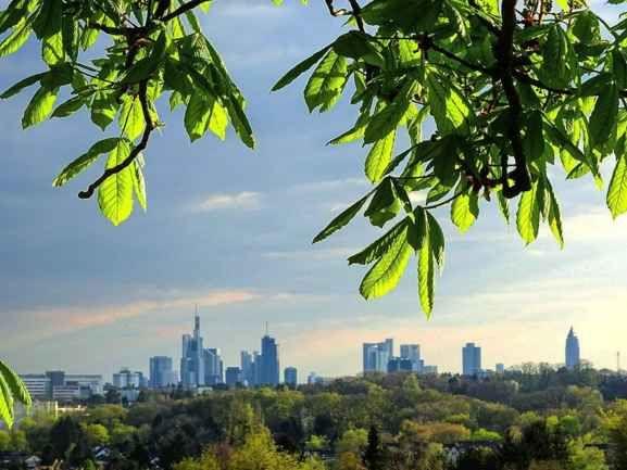 Die beste Aussicht auf die Skyline hast Du vom Lohrberg aus.