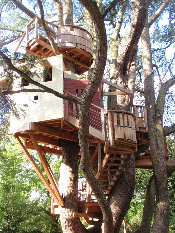 1754 best tree house images on Pinterest | The tree, Architecture and  Childhood