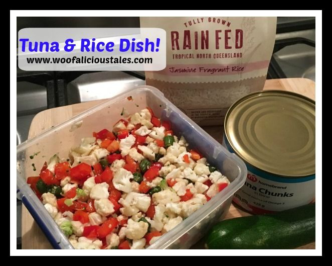 Nothing beats cheap home made AND nutritional food when it comes to your fur kids.  Try this Tuna and Rice Dish!!
