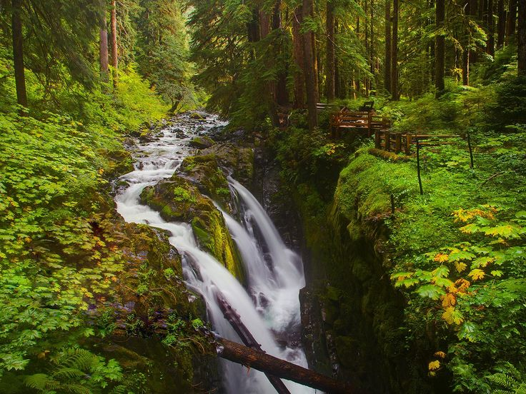 Şelale cenneti, Sol Duc Falls - Olimpik Ulusal Park, Washington, ABD