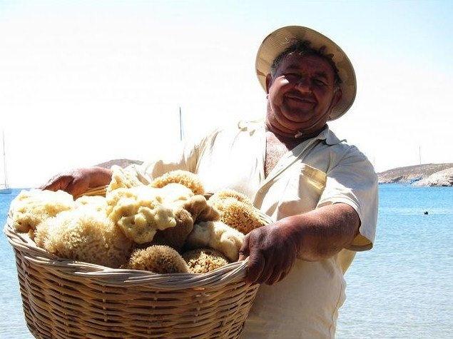 sea sponges in Lipsi