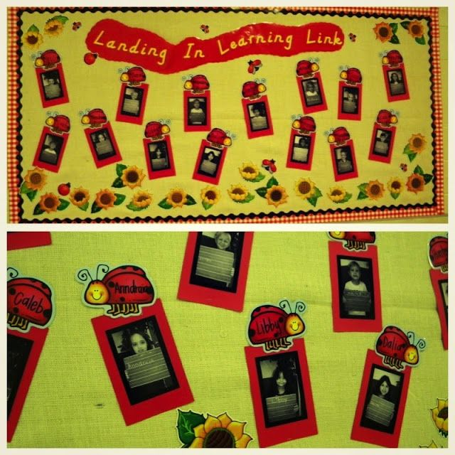Best 25 ladybug bulletin boards ideas on pinterest june for Bulletin board organization