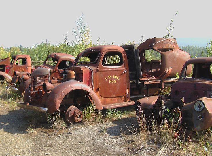 International pickup trucks and flatbeds from the 1930s rusting slowly away at Livengood, Alaska.